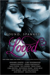 Steamy-Romance-Box-Set-Deal